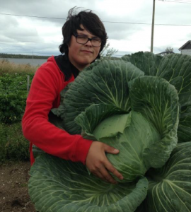 Malcolm, a youth garden participant, and his monster northern cabbage.