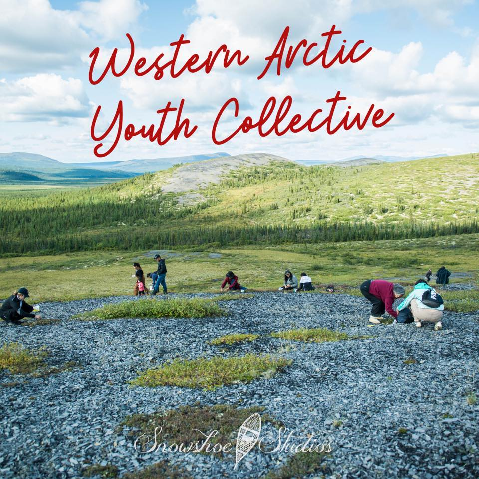 People in field, Western Arctic Youth Collective cover photo