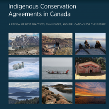 The cover page of the Conservation report