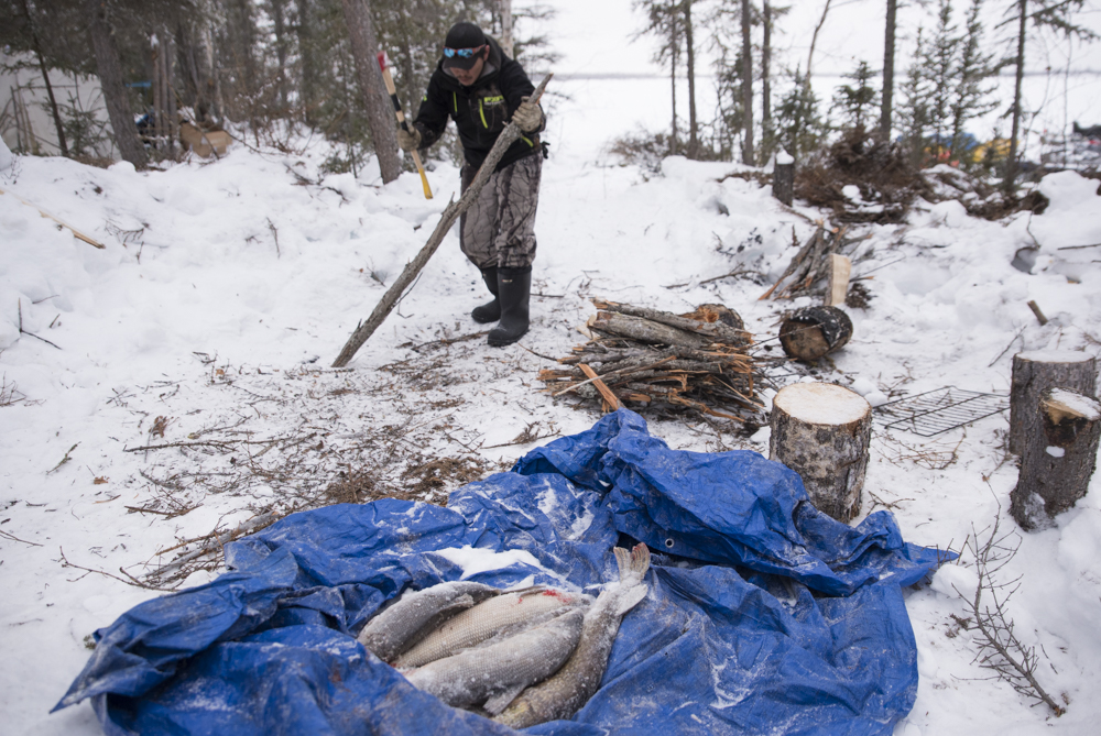Freshly-caught fish and a man cutting wood to make a fire.